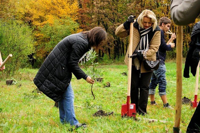 150 de stejari plantaţi pentru 150 UAIC