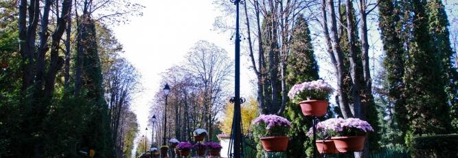 Gradina Botanica (1 of 156)