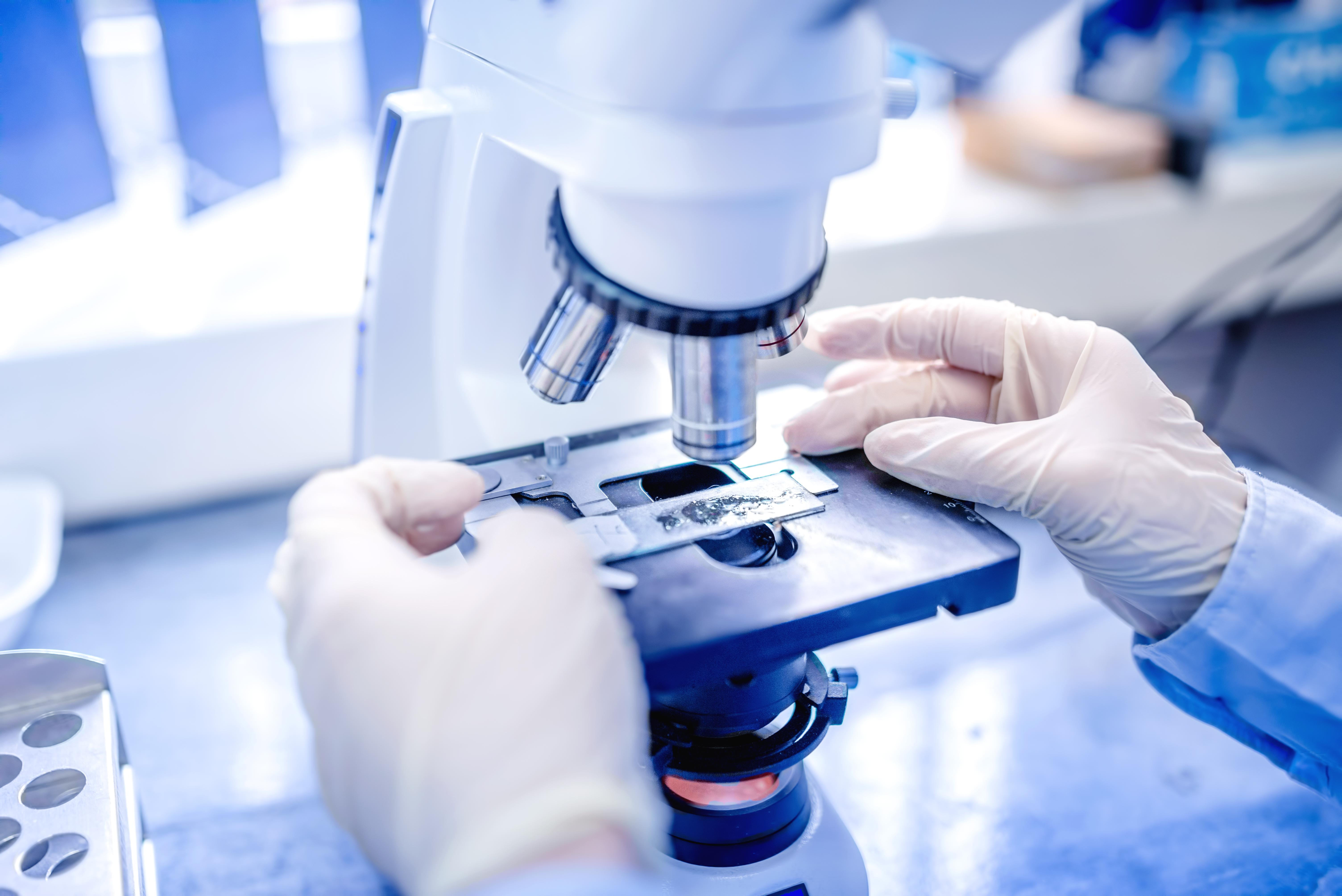 UAIC susține cercetarea științifică